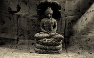 Le Yoga : perspective classique et contemporaine