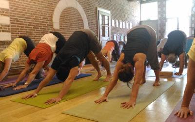 18 Fév | Matinée yoga pratique complète avec Neda