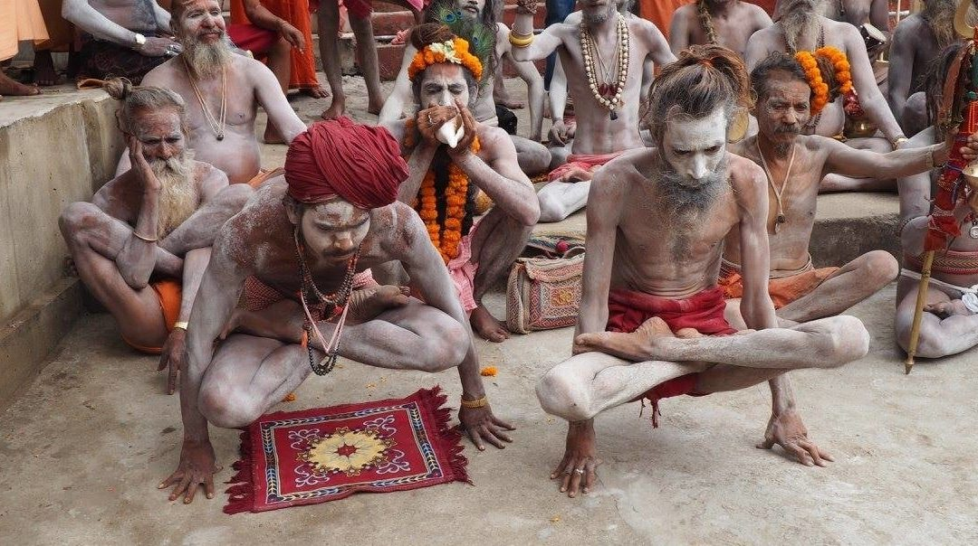 Donner la parole aux sādhus, une compréhension ascétique du Haṭha Yoga et des yogāsanas