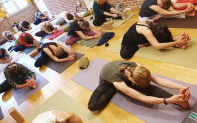 30 mai | Matinée yoga en ligne pratique complète avec Neda